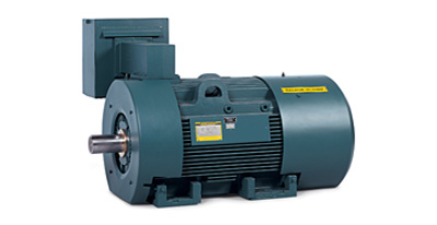 RELIANCE INVERTER DUTY MOTOR