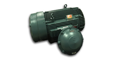 RELIANCE EXPLOSION PROOF MOTOR