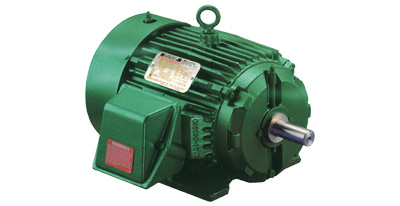RELIANCE CHEMICAL DUTY MOTOR