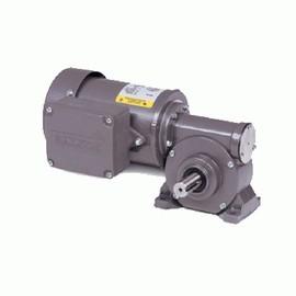 Gear motor & Gear Product